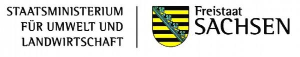 Logo Sachsen Kopie