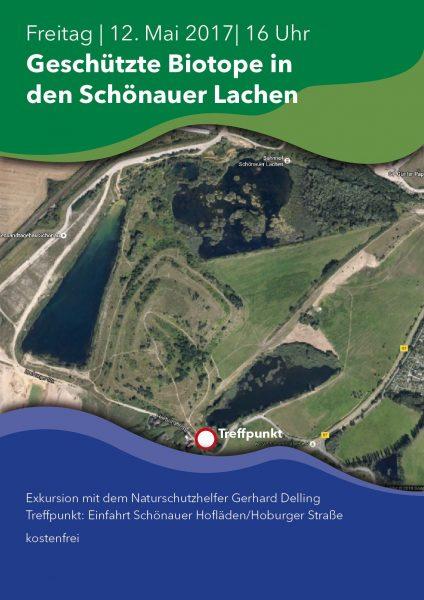 05 Biotope Schönauer Lachen