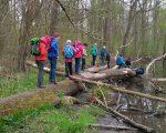 Die Jungen Auwald-Ranger bewältigten abenteuerliche Wege