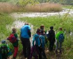 Mit René Sievert (Nabu Leipzig) entdeckten die Kinder eines der wertvollsten Gebiete im Leipziger Auensystem