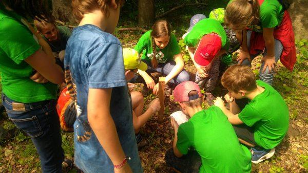 Die Kinder erfahren außerdem wie das Wildkatzenmonitoring mit Lockstock funktioniert.