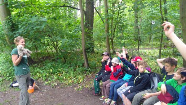"""Almut Gaisbauer (BUND Sachsen e.V.) gibt den Jungen Auwald-Rangern Enblicke in das Projekt """" Rettungsnetz Wildkatze"""" sowie sowie zur Lebensweise und Gefährdung der seltenen Auwaldbewohnerin."""