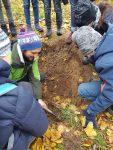 Am Bodenprofil erklärte uns Ronny von der Geowerkstatt den Aufbau des Bodens.