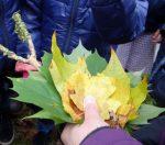 Gemeinsam suchte die Gruppe nach Blättern, wobei viele verschiedene Baumarten entdeckt wurden.