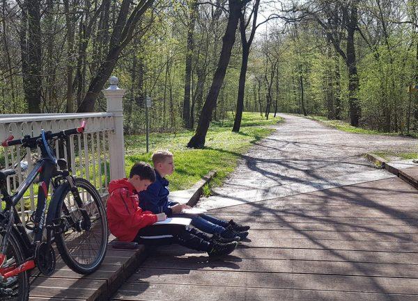 Die Jungen Auwald-Ranger fertigten von den verschiedenen Landschaftsbildern Skizzen an....