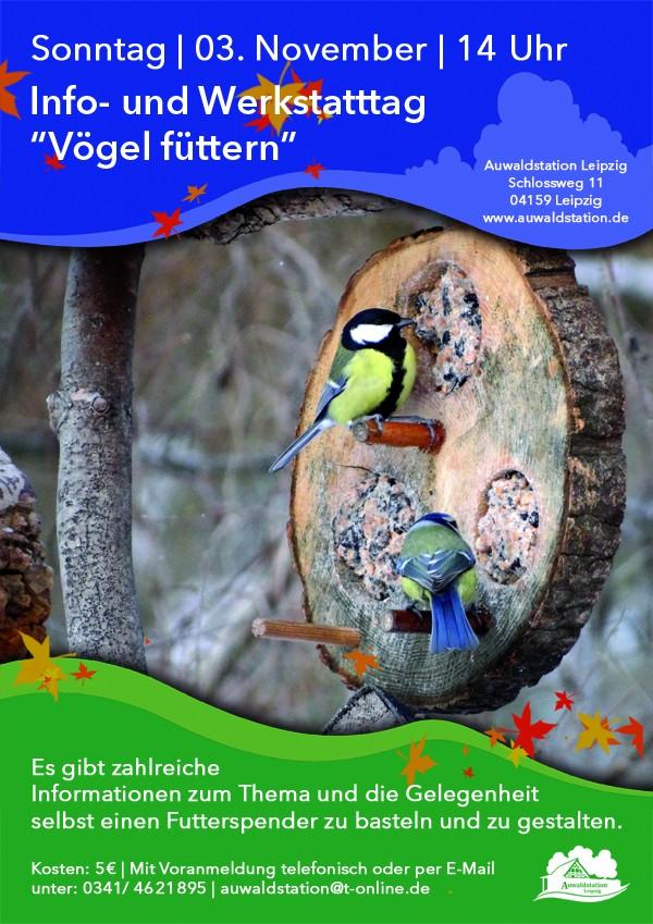 Werkstatttag Vögel füttern